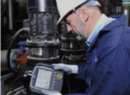 WI 202 Análise de Vibrações – Categoria I Habilitação para certificação ISO 18436-2